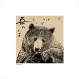 Bear of the Day_3