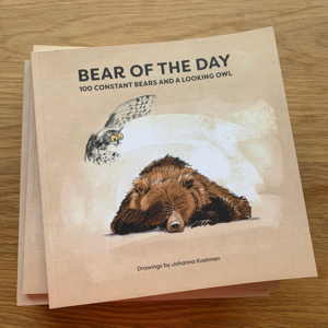 Bear of the Day
