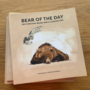 Bear-of-the-Day